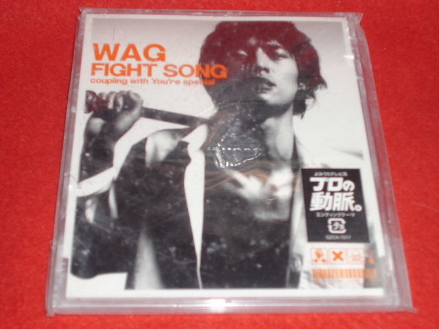 Музыка CD, DVD   FIGHT SONG WAG A3020