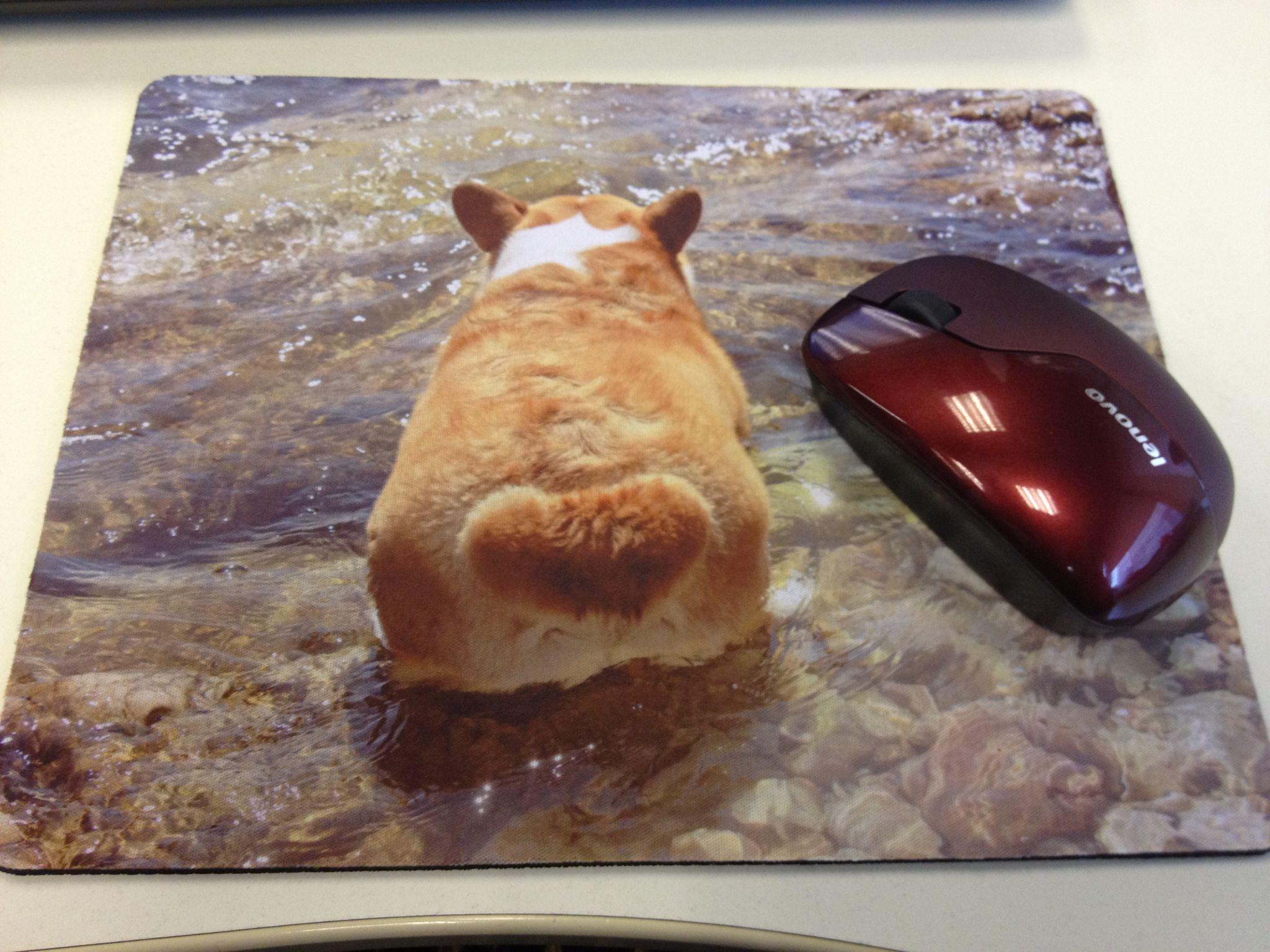 Аксесуары для животных DIY коврик Куги Томас Чан сахар море лес и Фарт (единой доставка 20 октября)