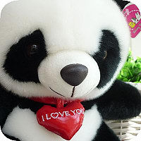 钟汉良同质黑花toyclub毛绒大熊猫玩具公仔送女友生日礼