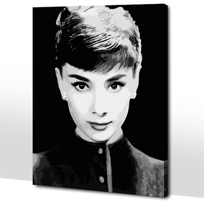 diy digital painting the living room painted 40 * 50 new stars Hepburn retro decorative painting