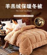 冬被加厚保暖8 10 12斤学生冬天棉被子绵被芯单双人宿舍羽绒