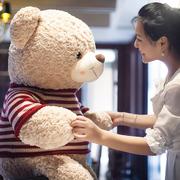 正版卡通泰迪熊公仔毛绒玩具娃娃送女友男孩大熊抱抱熊可爱女礼物