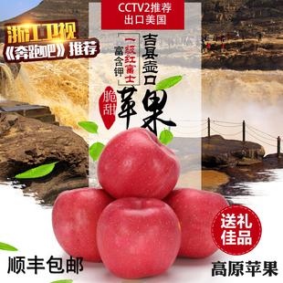 跑男应季新鲜水果山西吉县壶口高原红富士苹果水果 apple脆甜